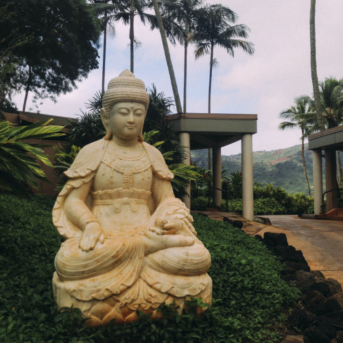 Buddha Photographed by Gypsy One in Kauai
