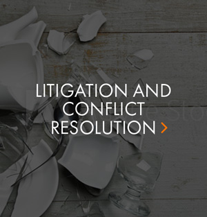 litigation.jpg