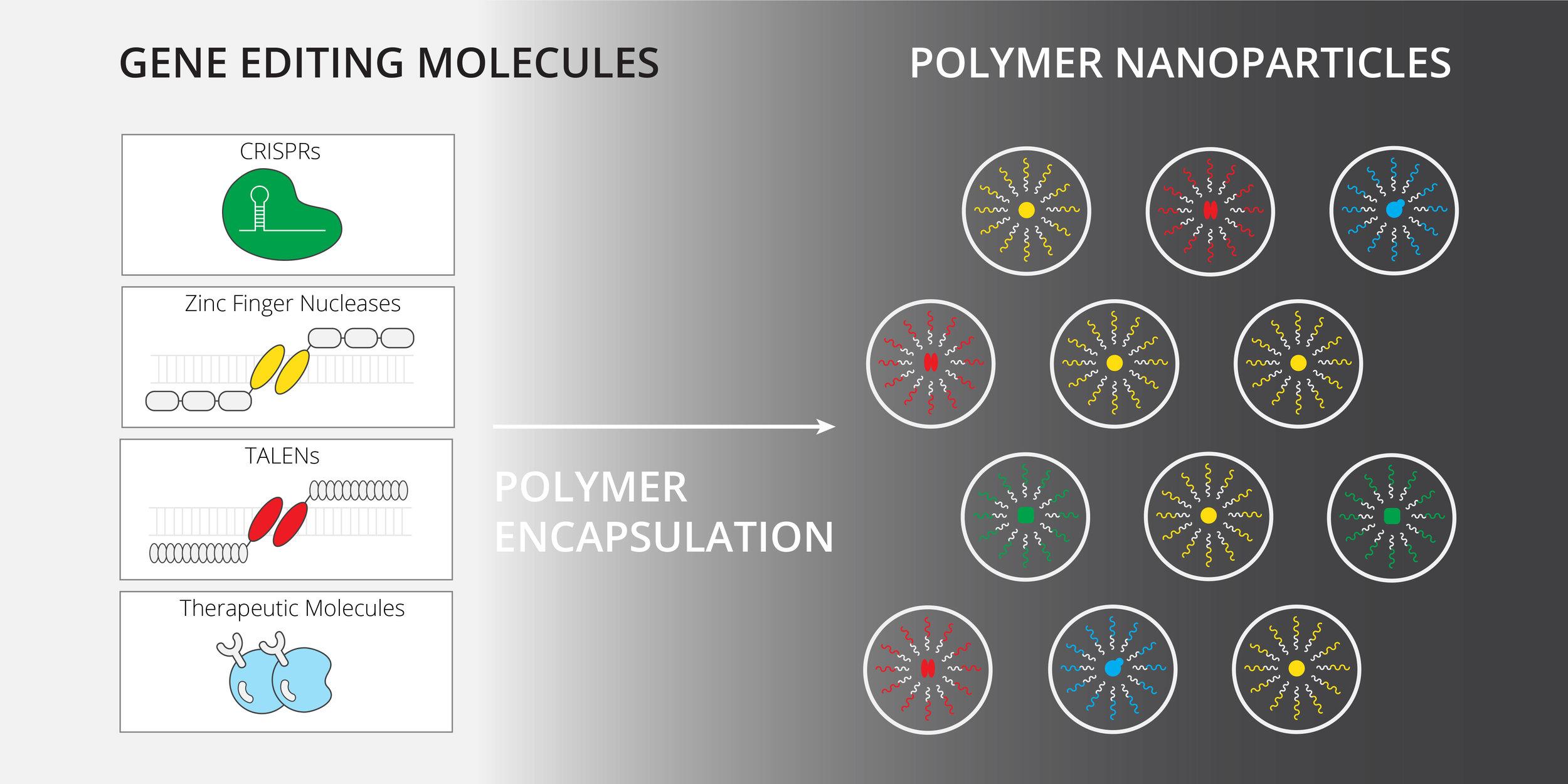 Nanoparticles_v1.jpg