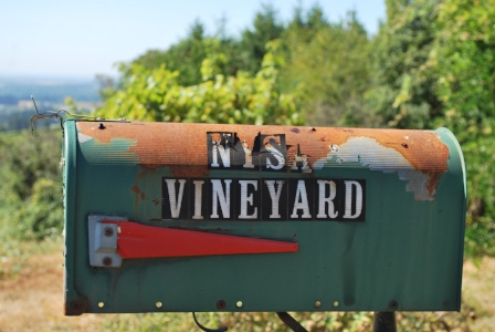 Nysa Vineyard Mail Aug 2016.jpg