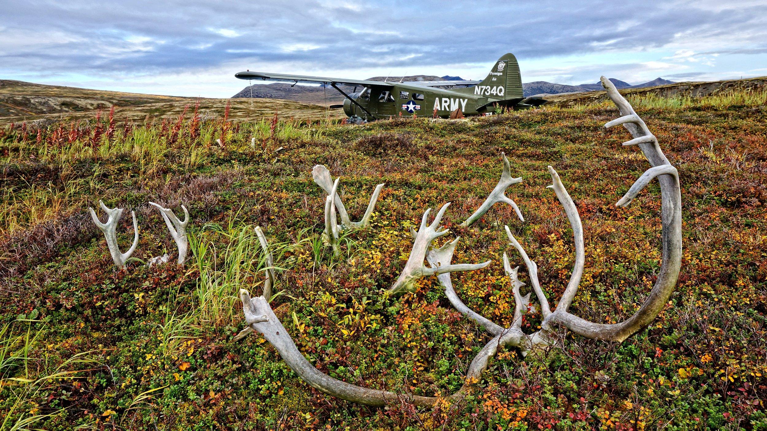 Papa Bear_Army Plane Base Camp.jpg