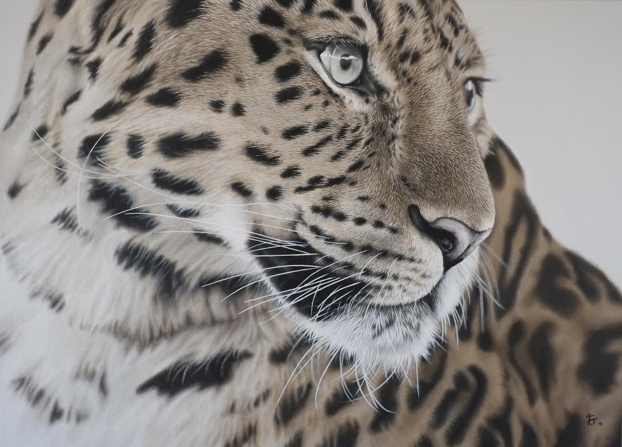 Leopard | SOLD      2016    Acrylic on canvas  50cm x 70cm x 3cm