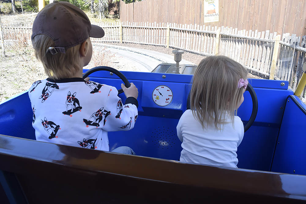 Bästa karusellen för en 1-åring; Skalmans bilar.