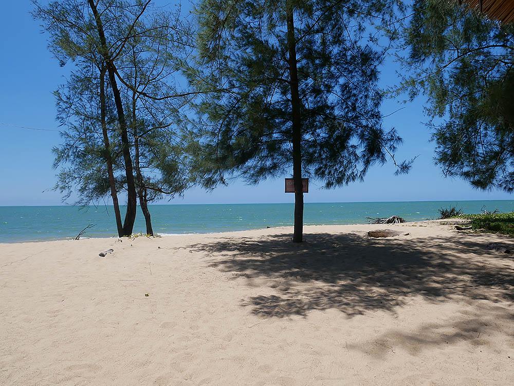 beach_mamas.jpg