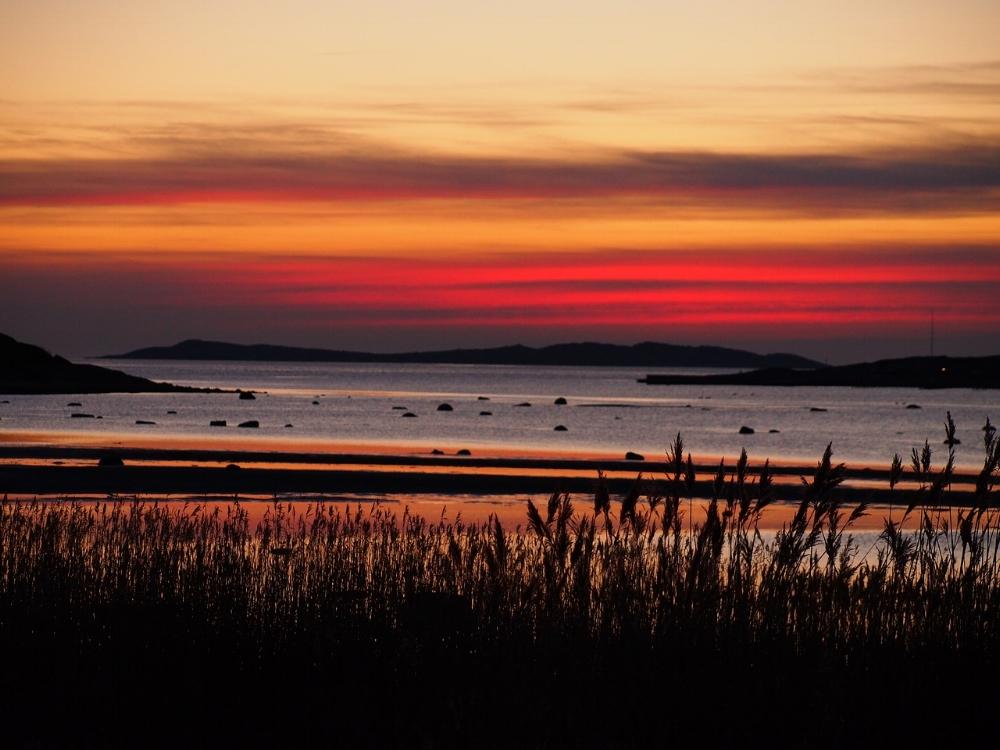 sunset-2439042_1280.jpg