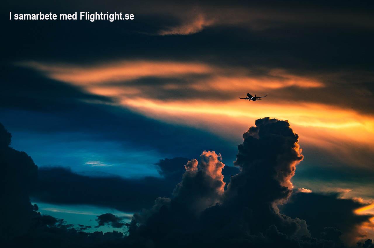 flightright.jpg
