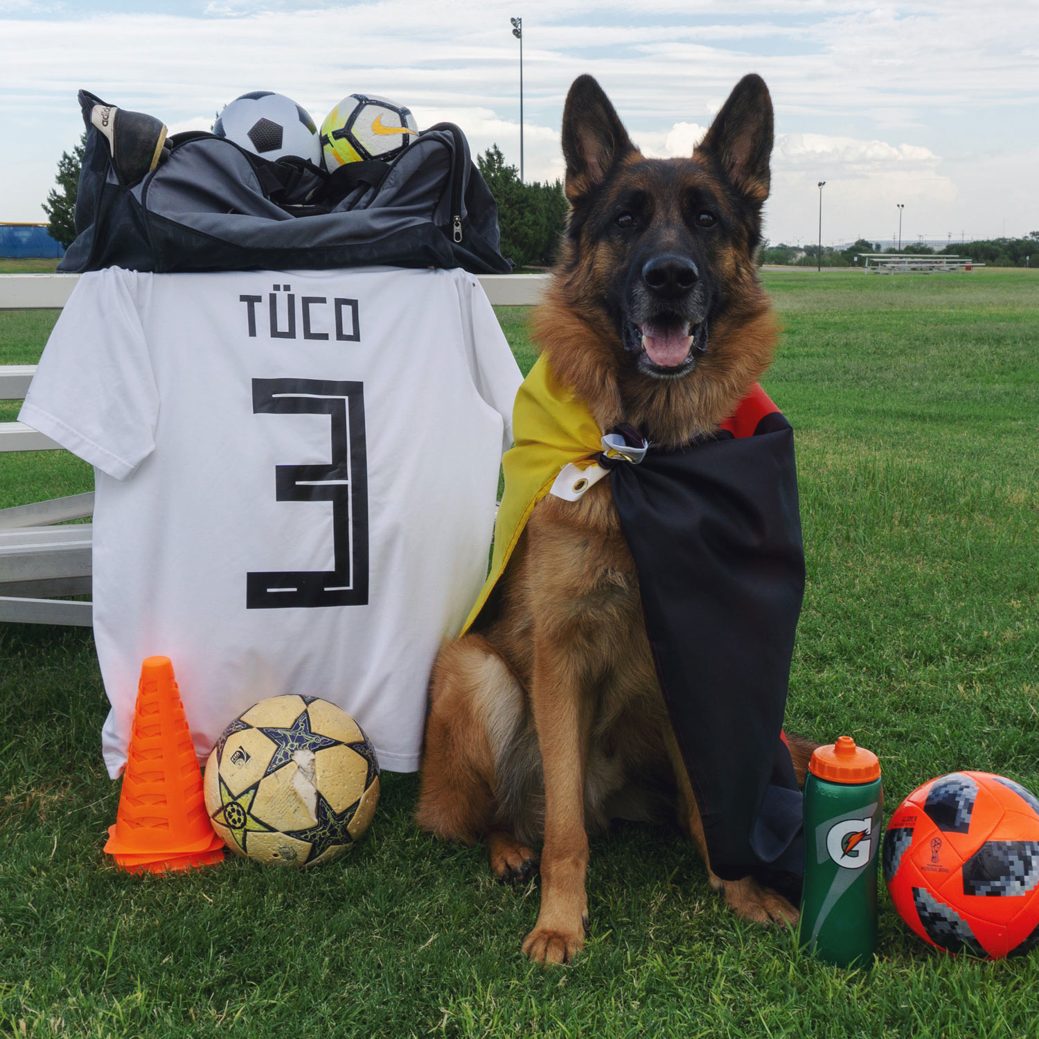 Tuco's home country might be out of the  #worldcup  but he's still their number 1 fan. Happy birthday to our soccer-lovin' 3-year-old! ⚽️🇩🇪 #seetucogrow   #tucodiaries  #diemannschaft   #gsd