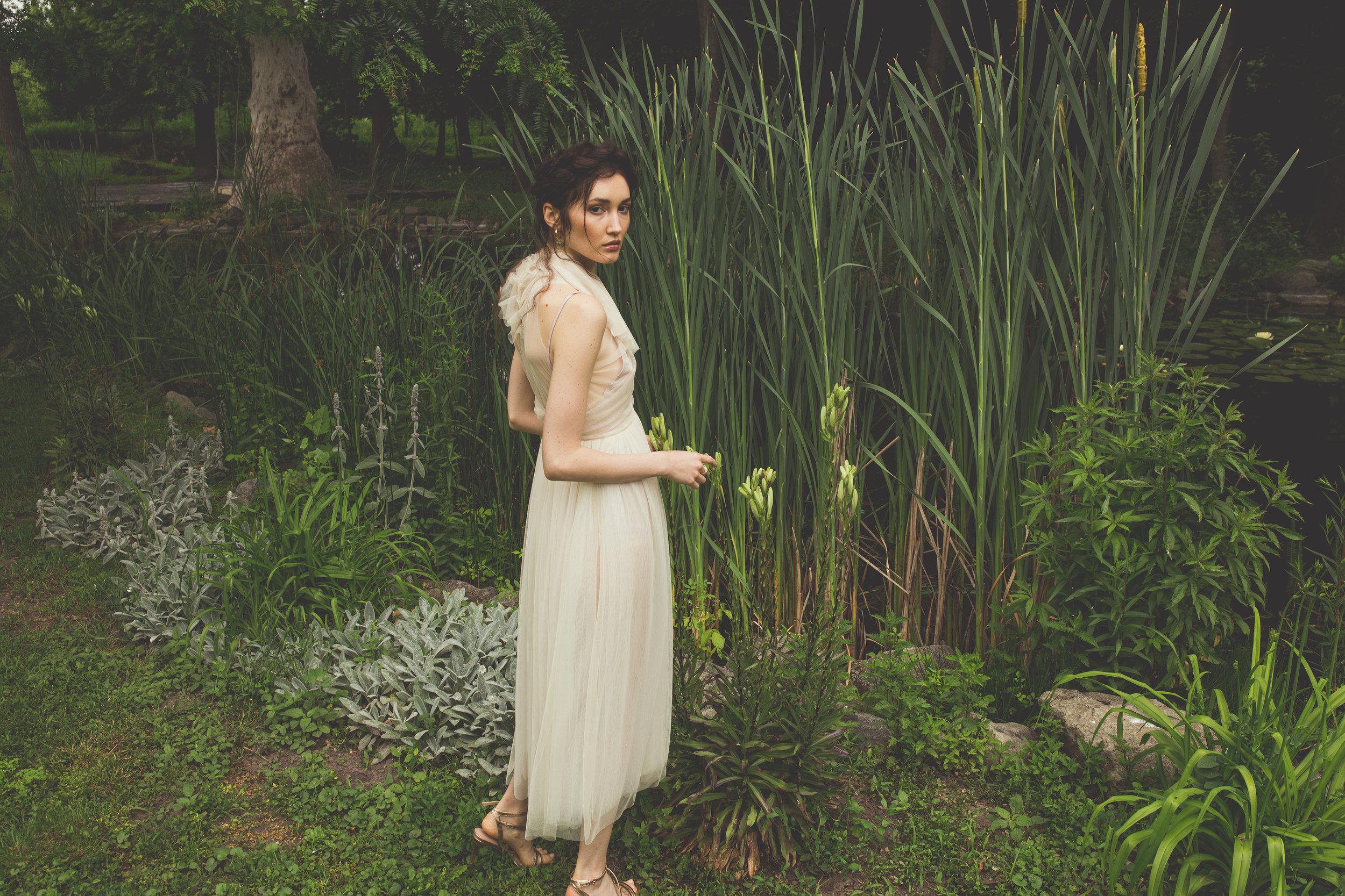garden_pond-28.jpg