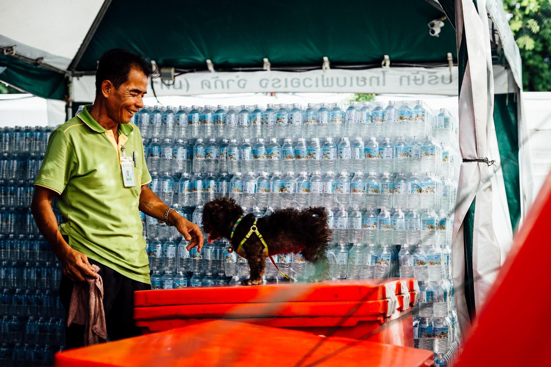 Bangkok-Thailand-Travel-Photography-Smile-People-Dog.jpg