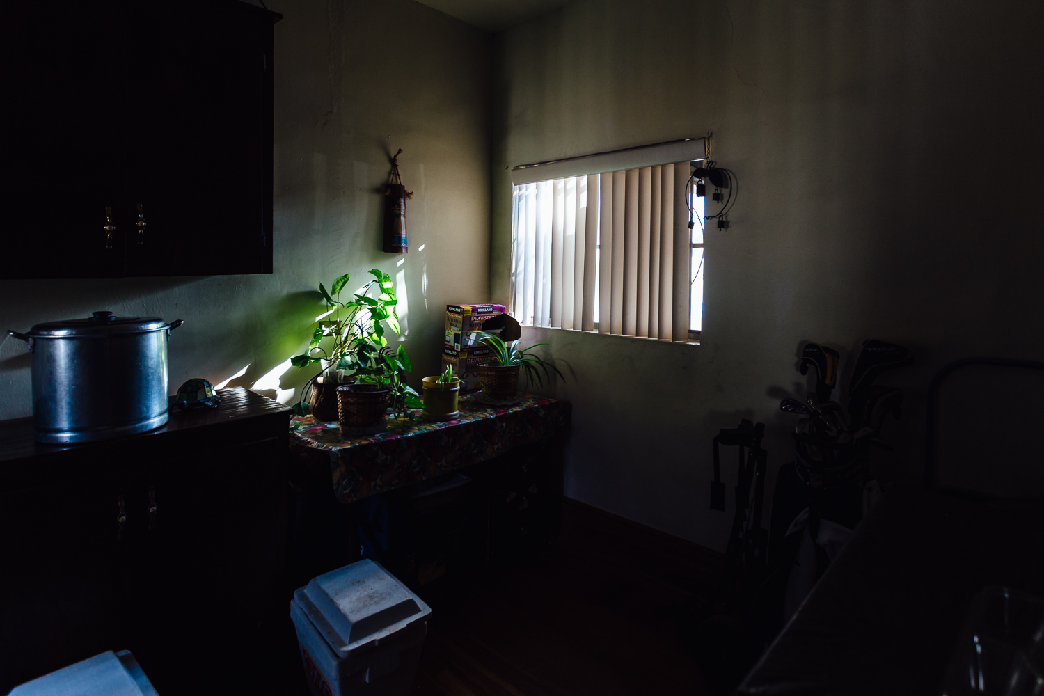 Light-Window-Plants-Mexico-Family-Home-Durazo-Photography