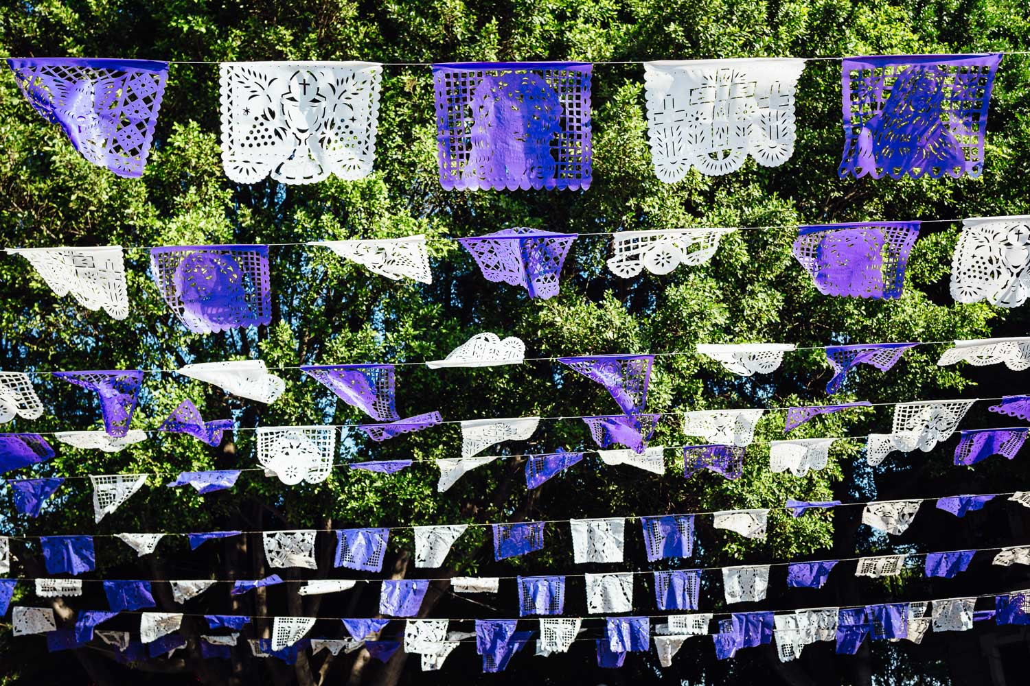 Mexico-HolyWeek-Purple-Flags-Plaza-Durazo-Photography