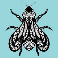 Contact Bee Well Holistic Health