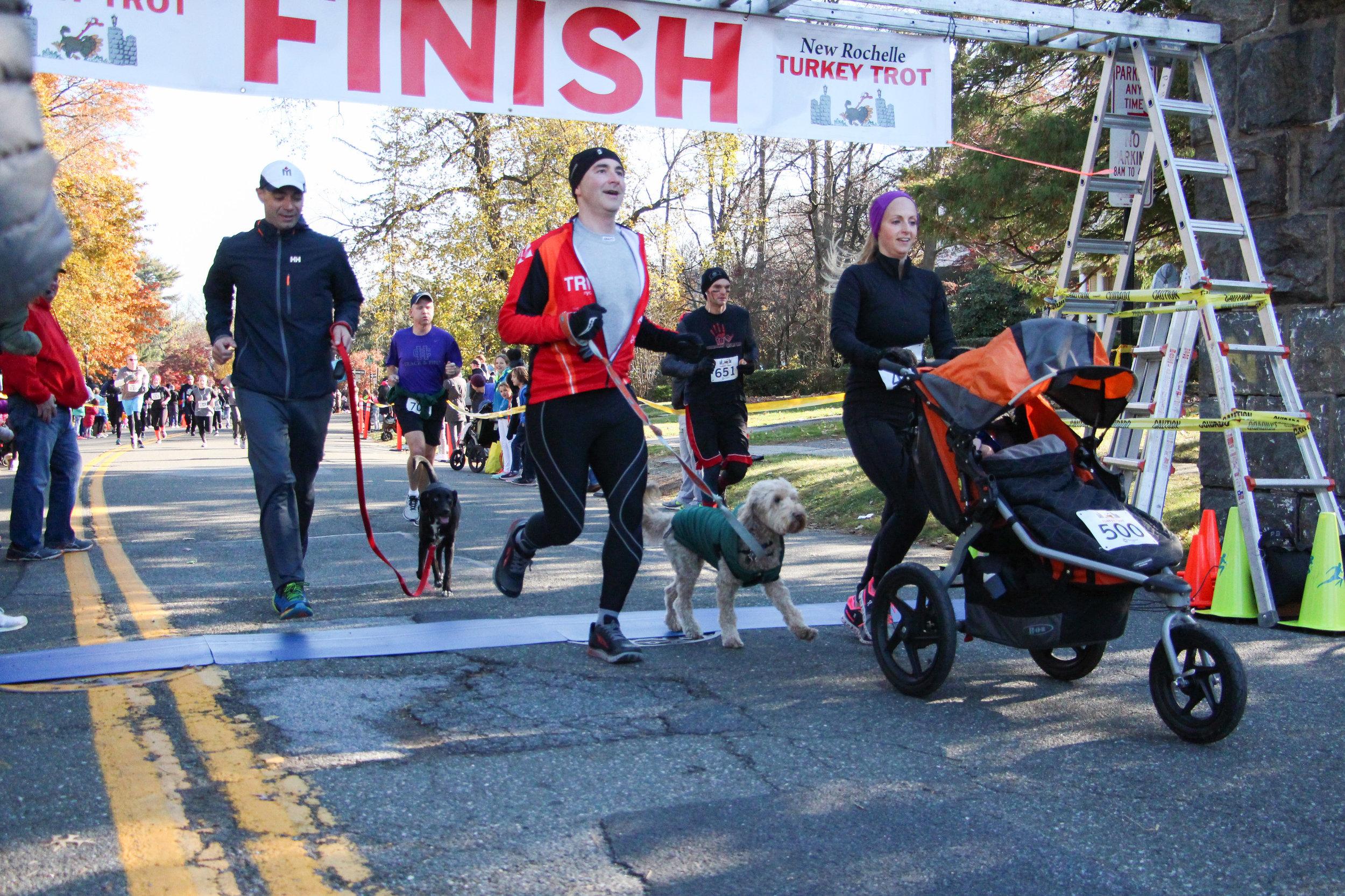 #1 & #2 Dog Finishers