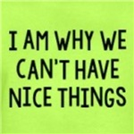 I am why we can't have nice things funny shirts