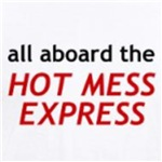 Hot Mess Express Funny Adult Humor t-shirts