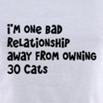 Bad Relationship away from thirty cats funny