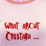 What about Cheetara funny retro t-shirts for Thunder Cat fans