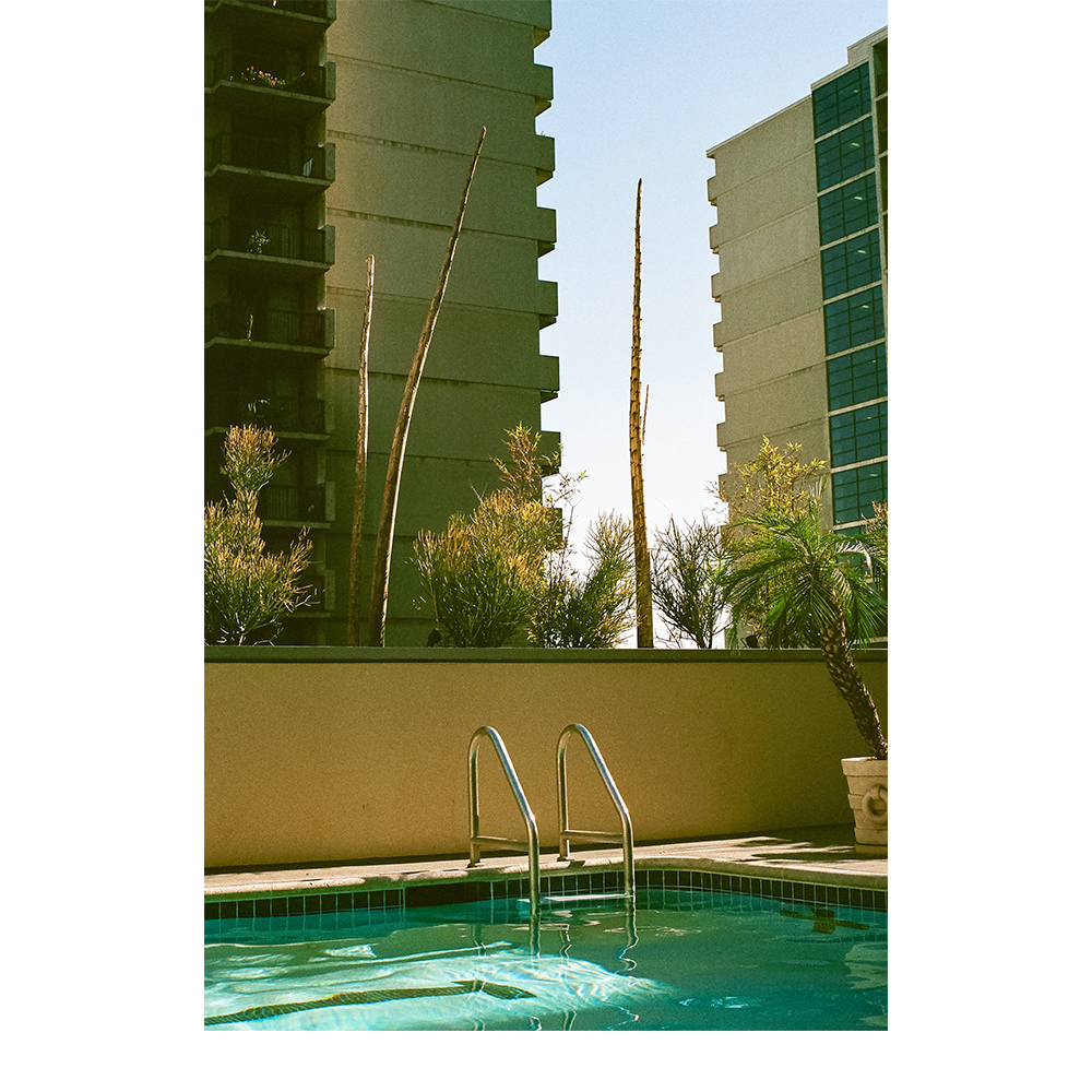 LA Pool.jpg