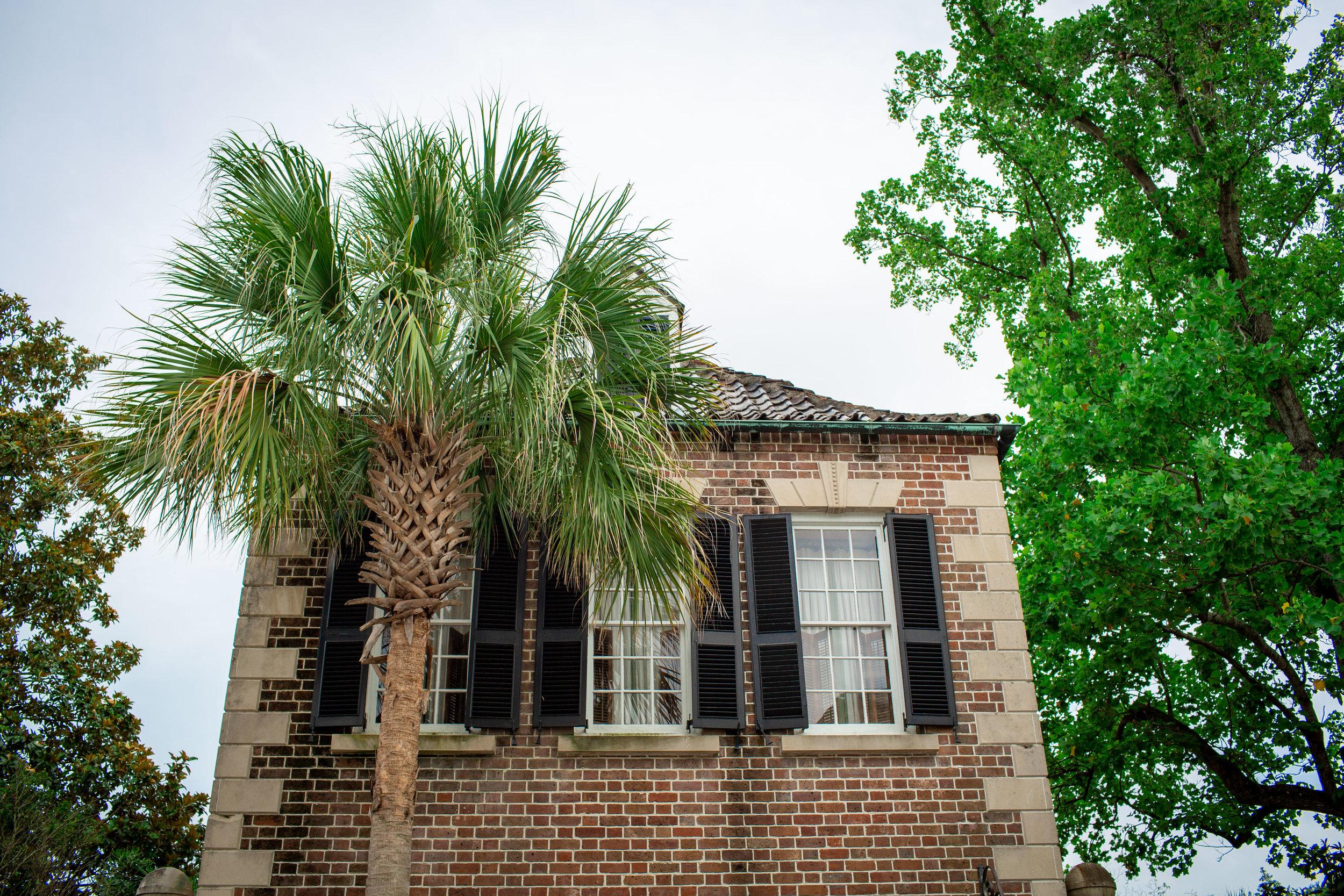 Charleston-5.jpg