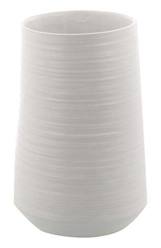 Benzara Vase.jpg
