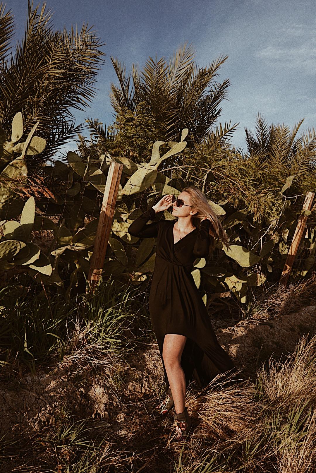 julia o test creative palm springs guide niland california