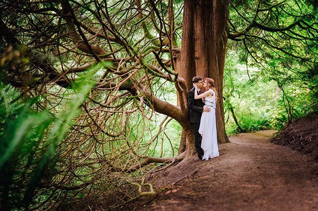 These two lookin' like they're straight out of a fairytale ✨ Congratulations Kierstin & Joe on 5 Year's of marriage! ❤️ #fiveyearanniversary #anniversaryphotos #vowrenewal #couplesphotos #oregonweddingphotography #focalpointstudios #focalpointweddings #outdoorceremony #portlandor #portlandparks #adventurebrides #hoytarboretum