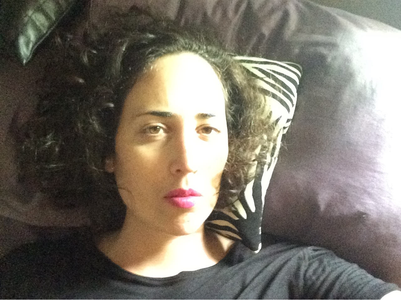 A grainy high contrast photo shows the author from the shoulders up. Her head rests on a small black and white zebra print pillow on a dark background. Her chin length curly brown hair rests around her face, which is brightly lit from one side, creating an impression of glowing. She has white skin and her brown eyes look directly at the viewer. Her bright pink lips are closed and unsmiling. The picture is serious in tone and communicates pride and strength.