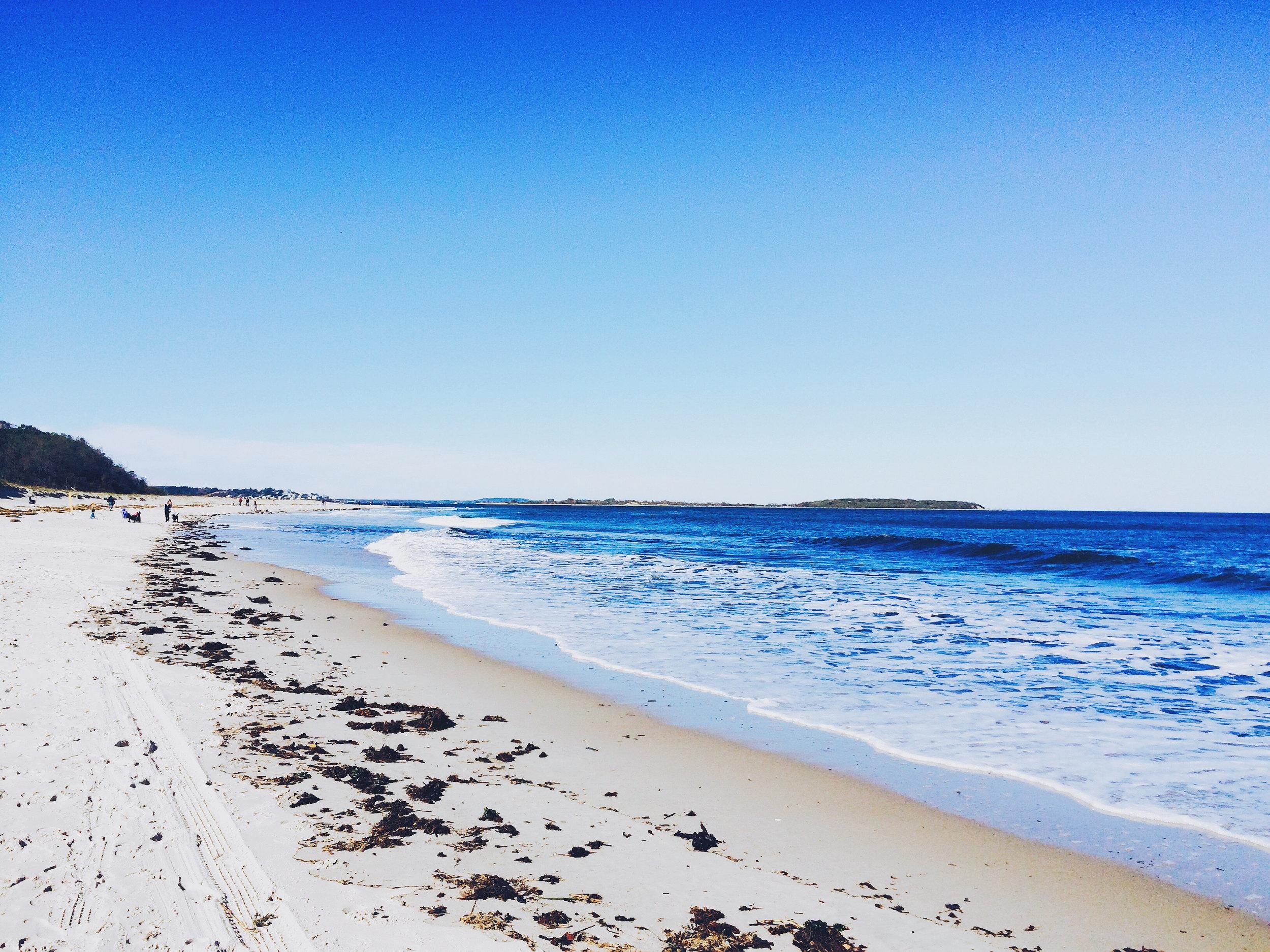 Beaches Brisbane - Sam Wheeler