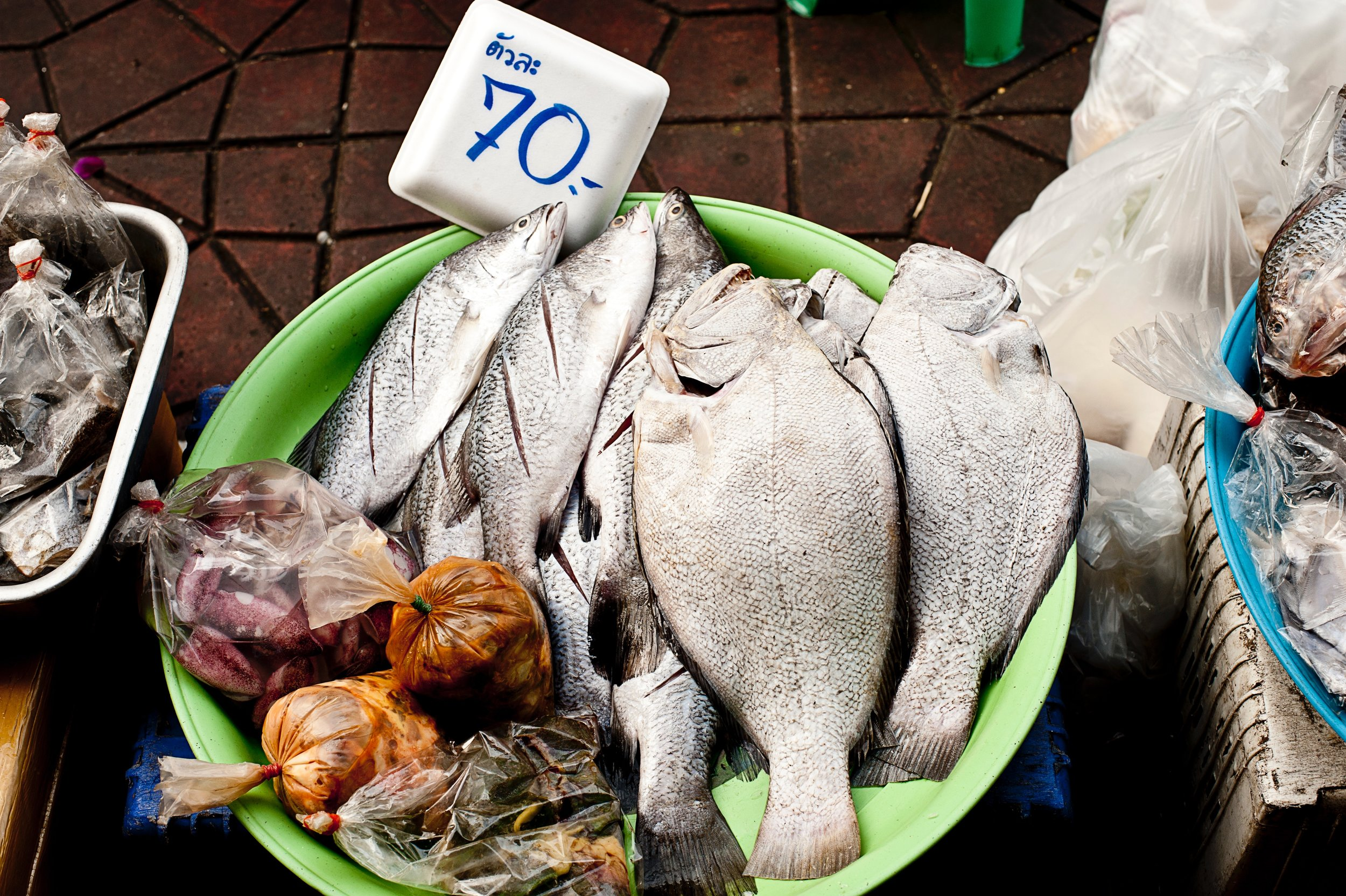 Fish are high in vitamin B
