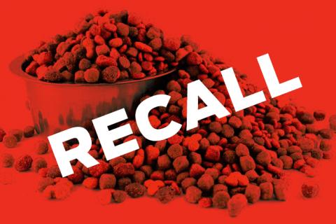 dog-food-recall.png