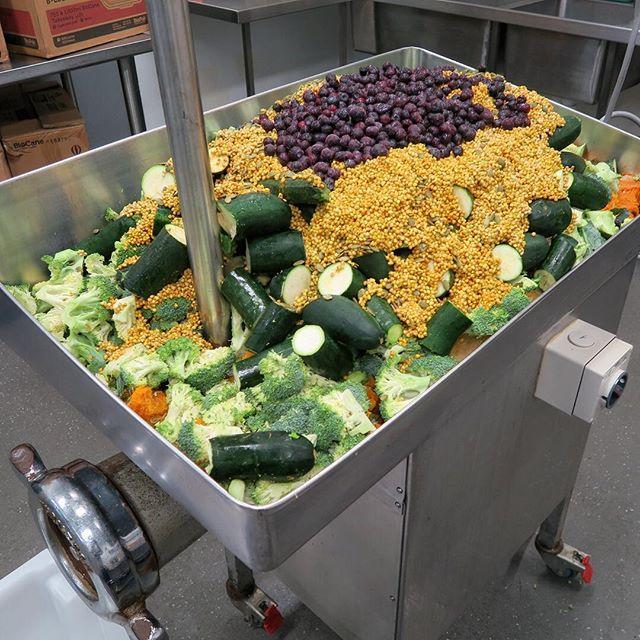 Gotta love organic blueberries! 🍇 #organic #localproduce #rawfeddog #dogsofbrisbane