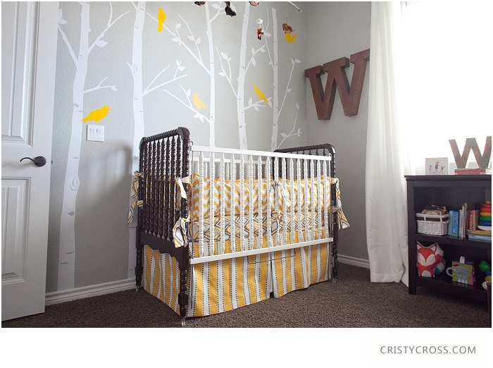 Cristy-Cross-Photography_baby-room_009.jpg