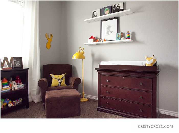 Cristy-Cross-Photography_baby-room_011.jpg