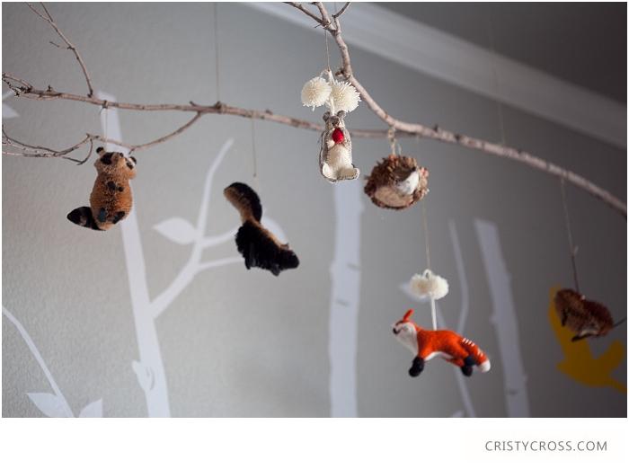 Cristy-Cross-Photography_baby-room_015.jpg