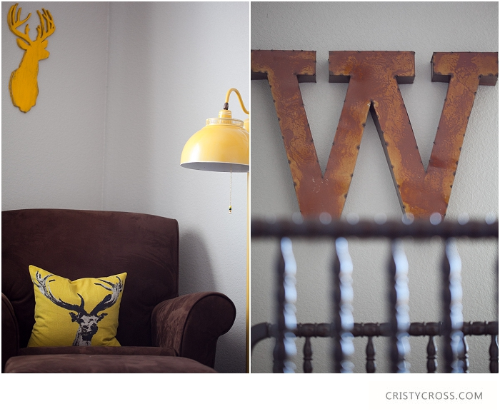 Cristy-Cross-Photography_baby-room_017.jpg