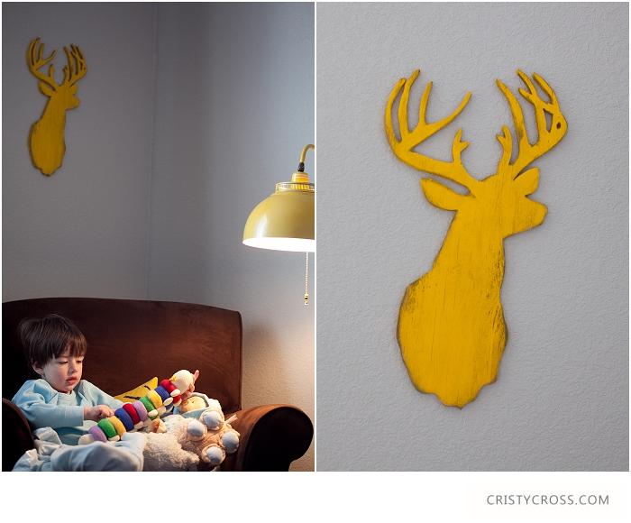Cristy-Cross-Photography_baby-room_025.jpg