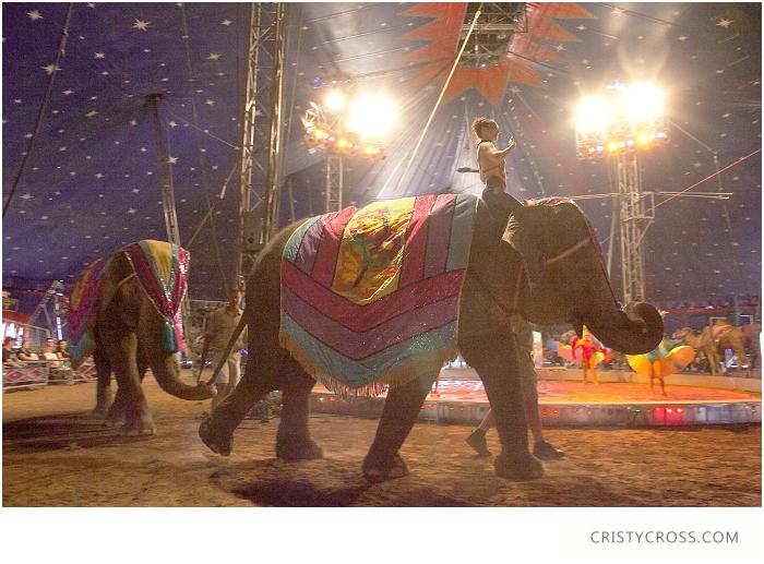 Clovis-Circus-taken-by-Portrait-Photographer-Cristy-Cross_016.jpg