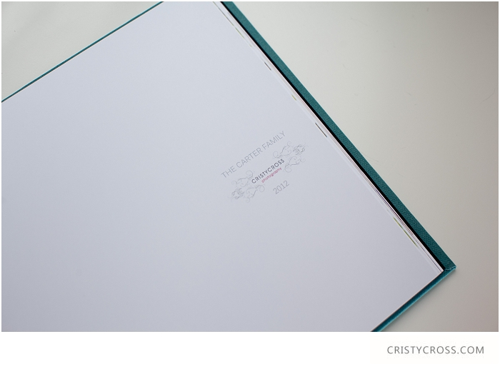 LookBook-and-family-session-taken-by-Clovis-Portrait-Photographer-Cristy-Cross_105.jpg