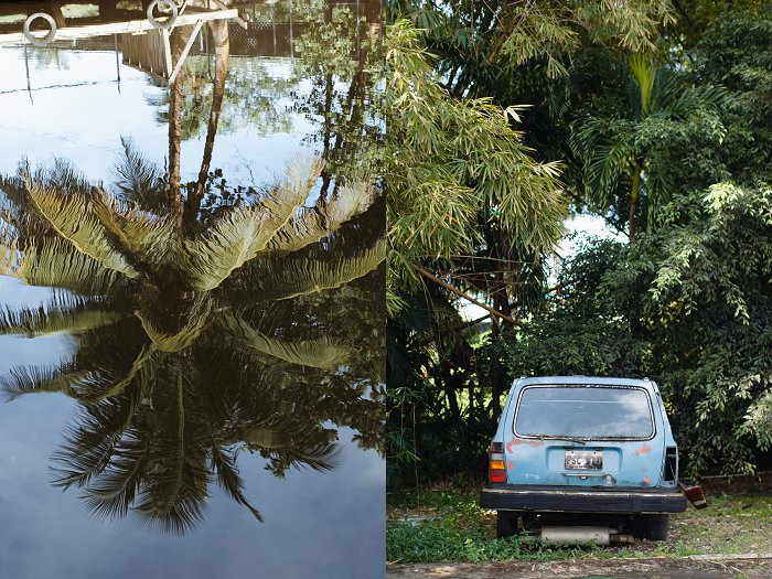 Puerto Rico Photographs with Cristy Cross Photography_0005.jpg