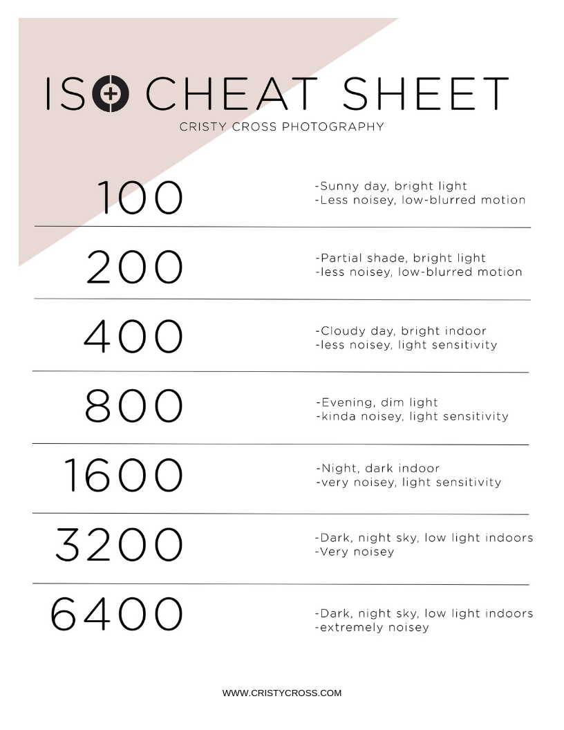 ISO cheat sheet.jpg