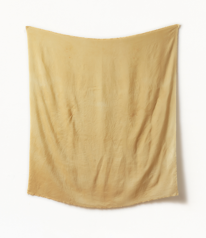 Botanical-Backdrop VII, Siri Hayes, 2017, Inkjet on cotton rag art paper, 128 x 110cm