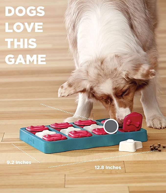 Juego para perros