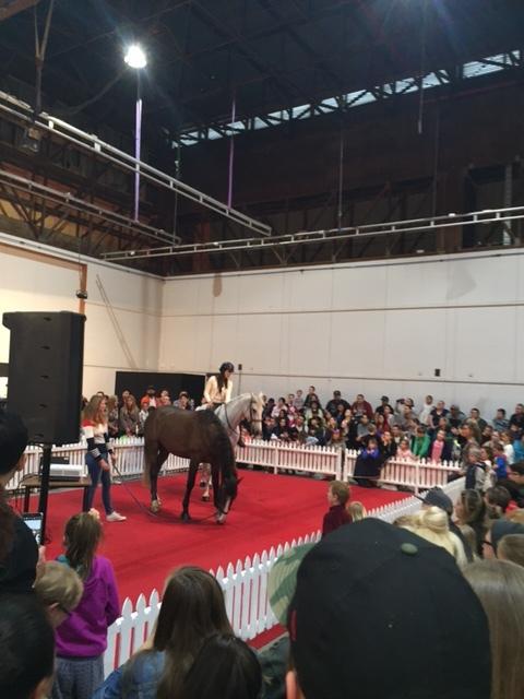 Performance Arena.JPG