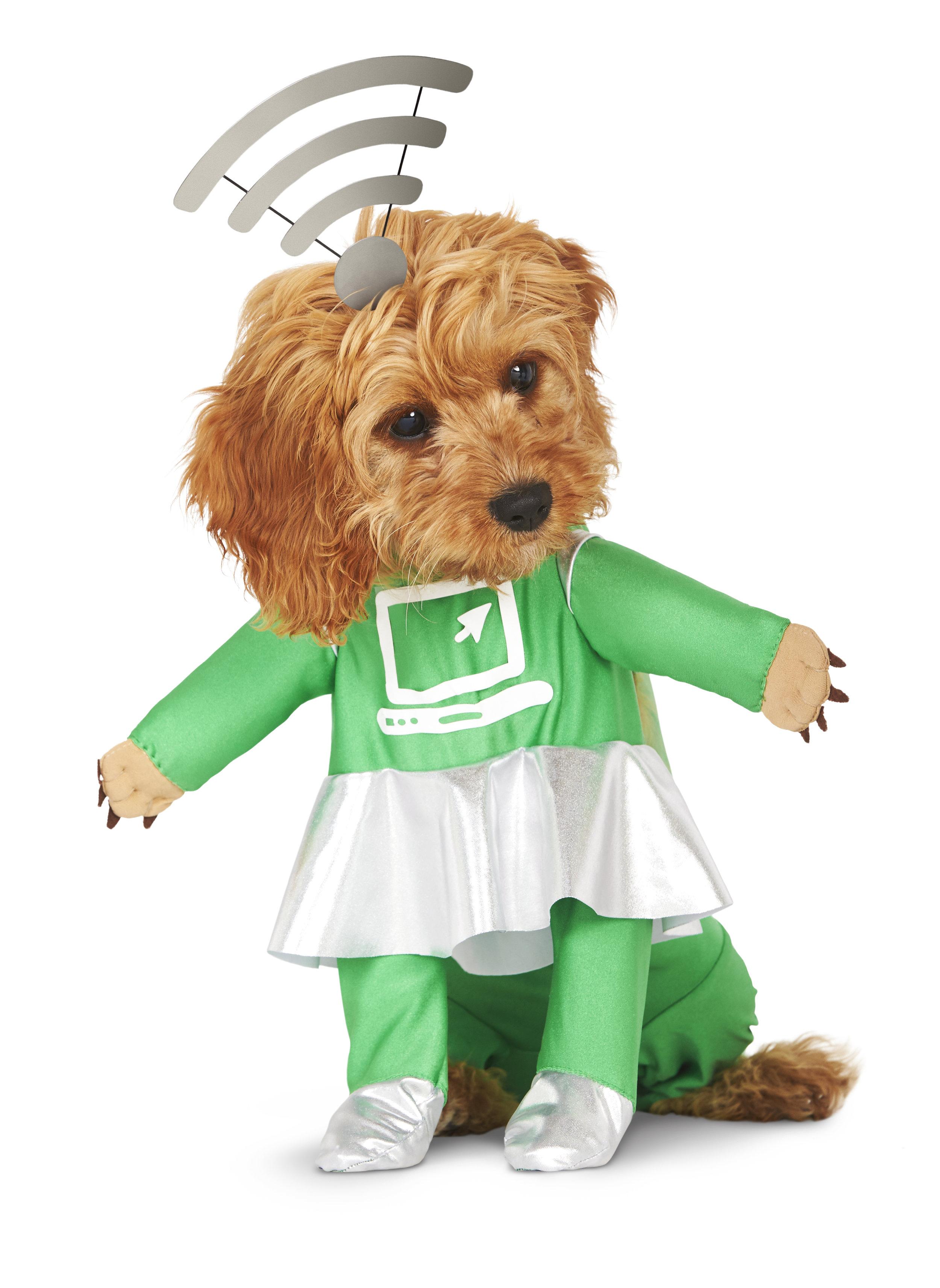 puppy-internet_287471.jpg