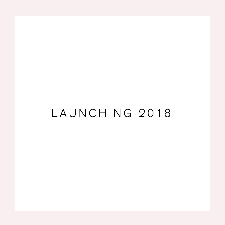 Temme_web_Launching-01.jpg