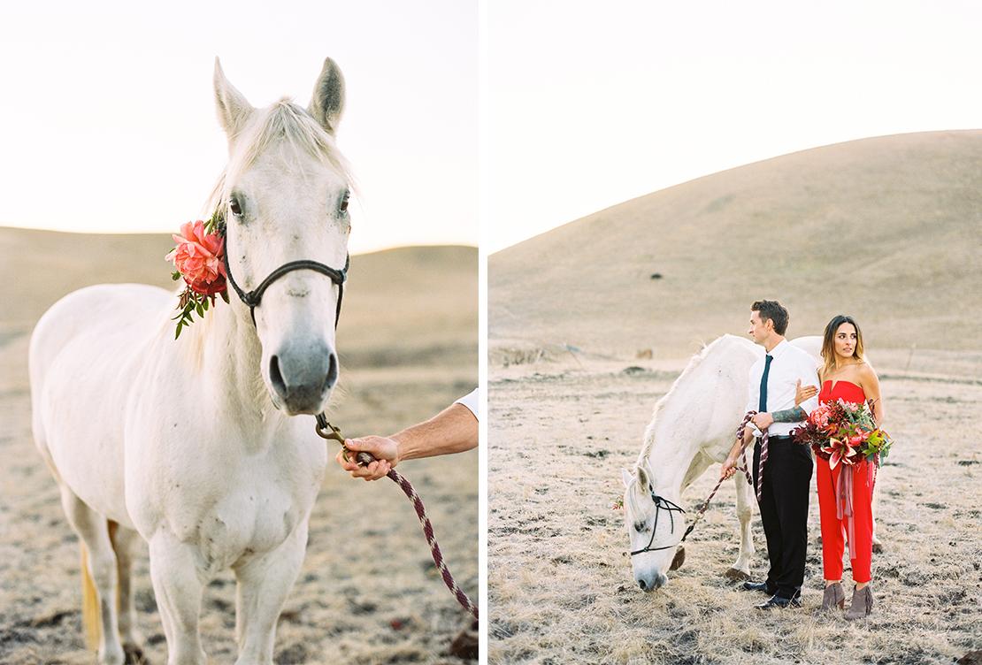 sweet_and_crafty_jewel_toned_ranch_wedding_portfolio_24.jpg