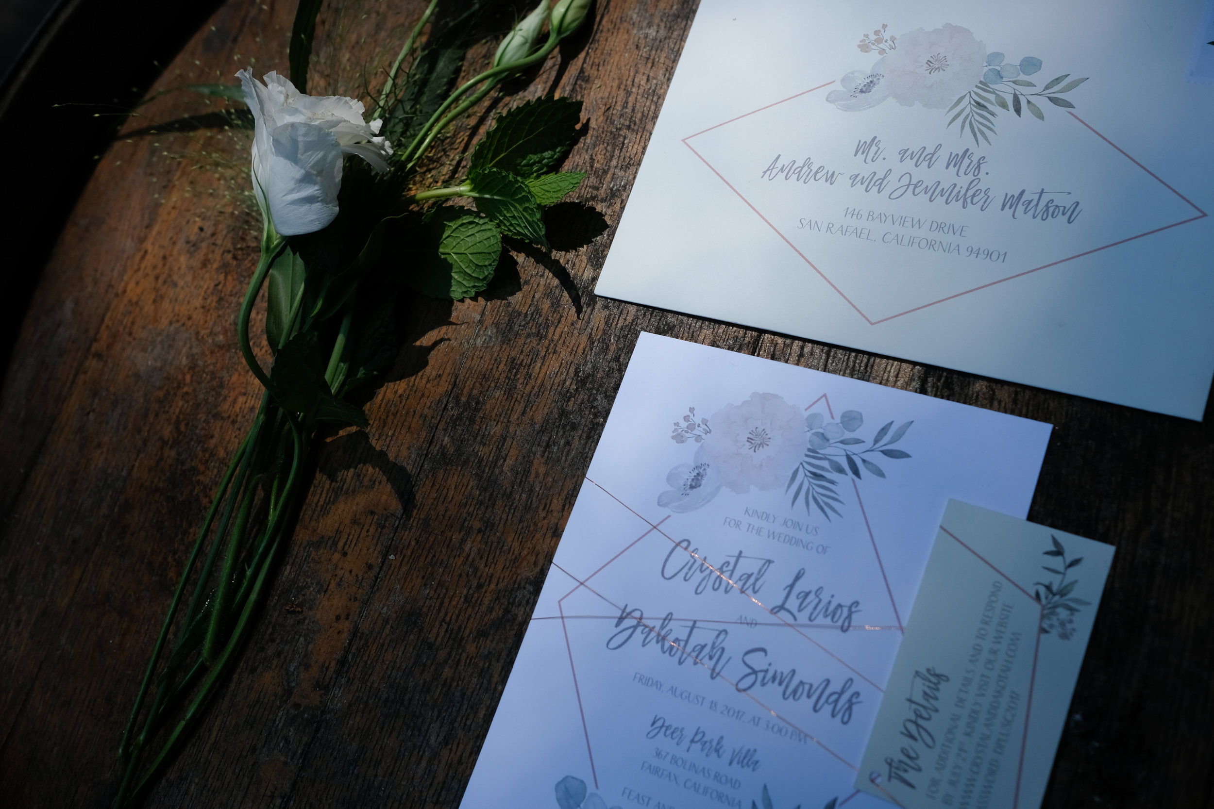 sweet_and_crafty_deer_park_villa_wedding_002.jpg