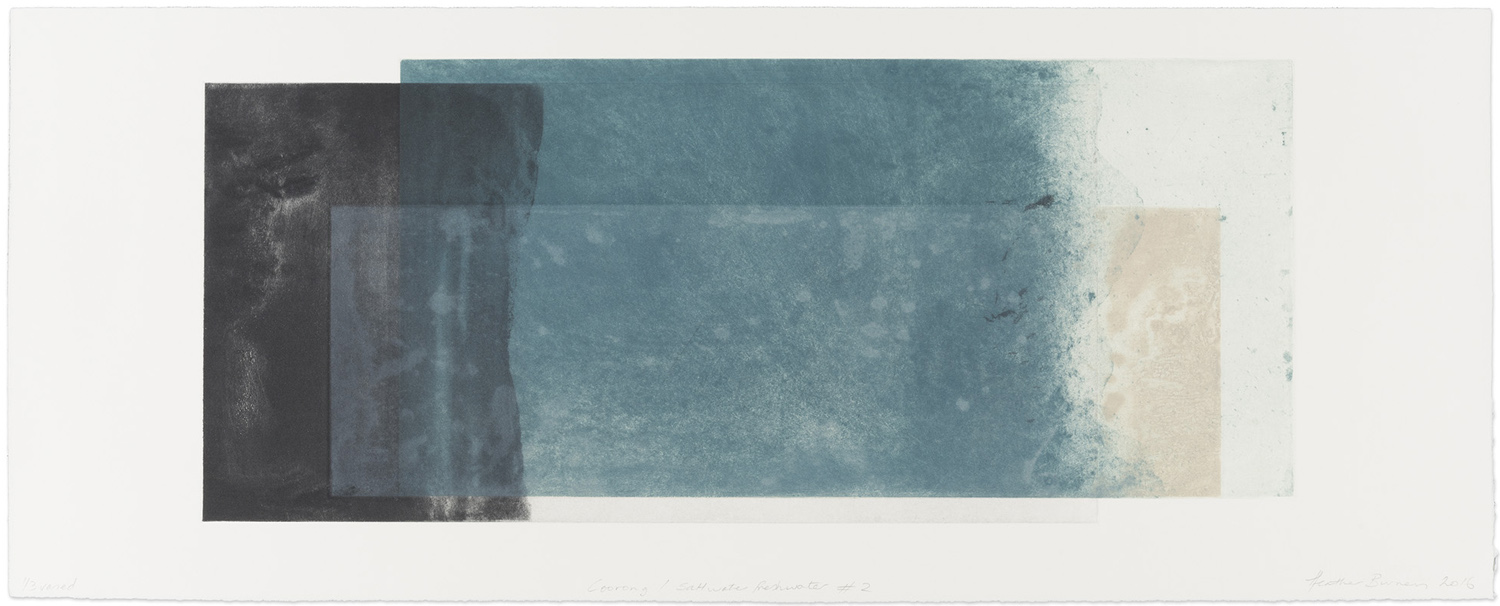 Coorong/ Saltwater freshwater #2  Edition number 1/3 2016 Multiplate colour etching 39 x 100cm