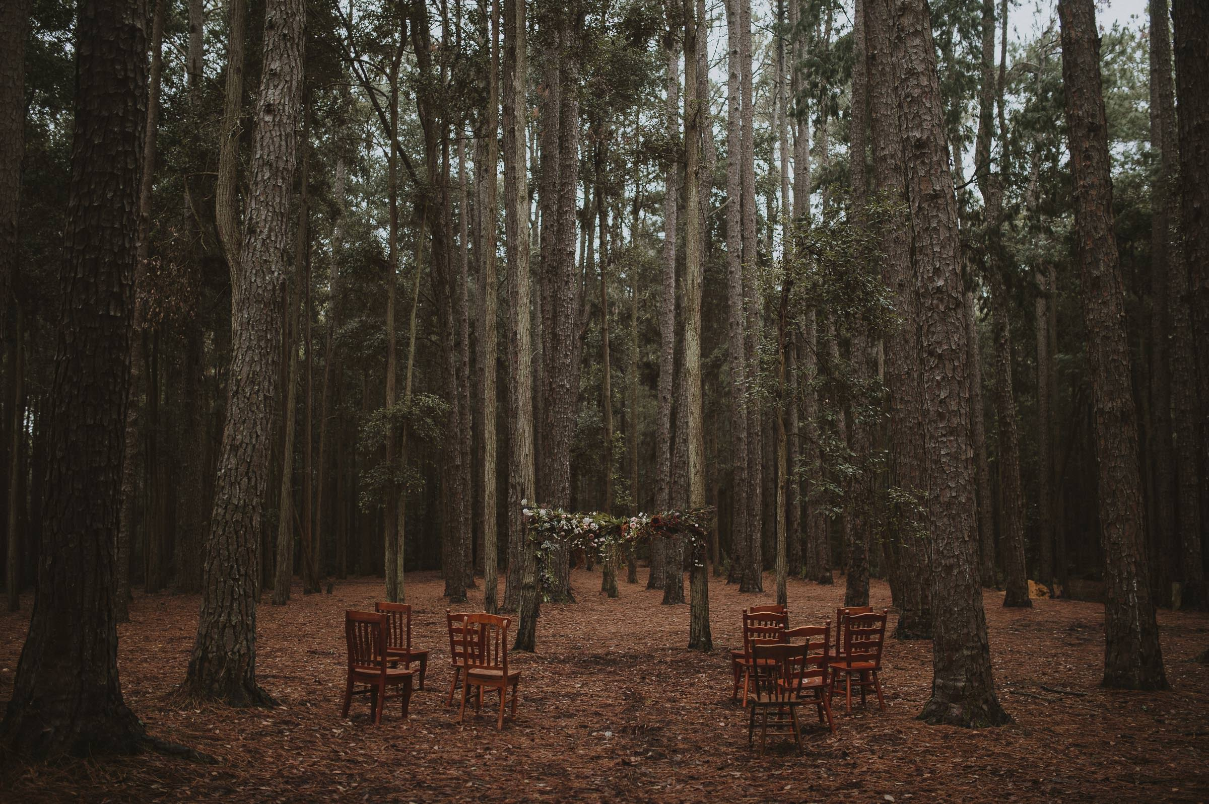 Watagens National Park elopement