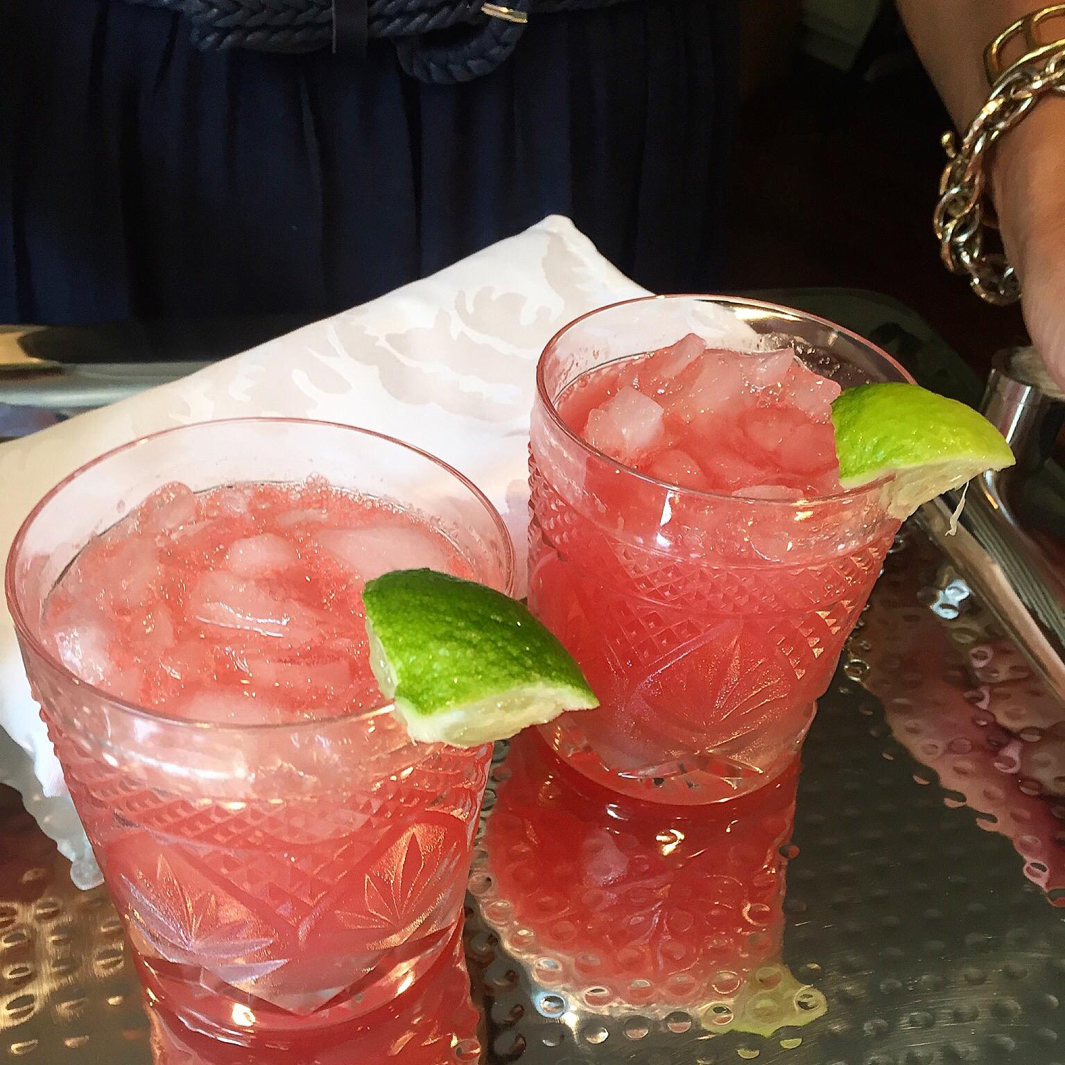 watermelon gin fizz recipe by New England Fine Living 1.JPG